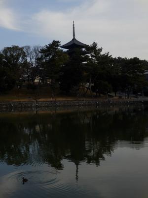 Nara2014_01.jpg